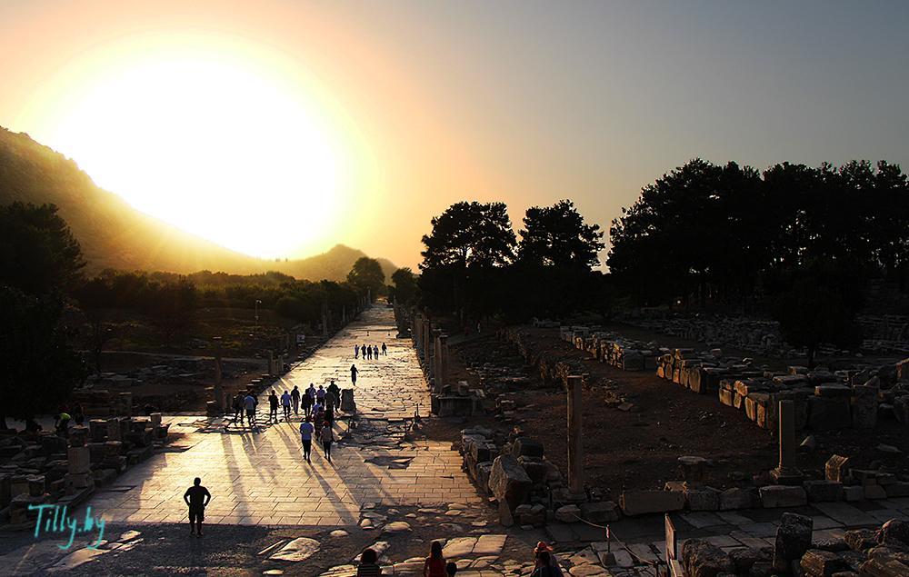 Путь Аркадия Эфес
