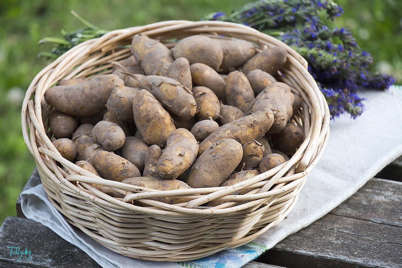 Картофель La Ratte